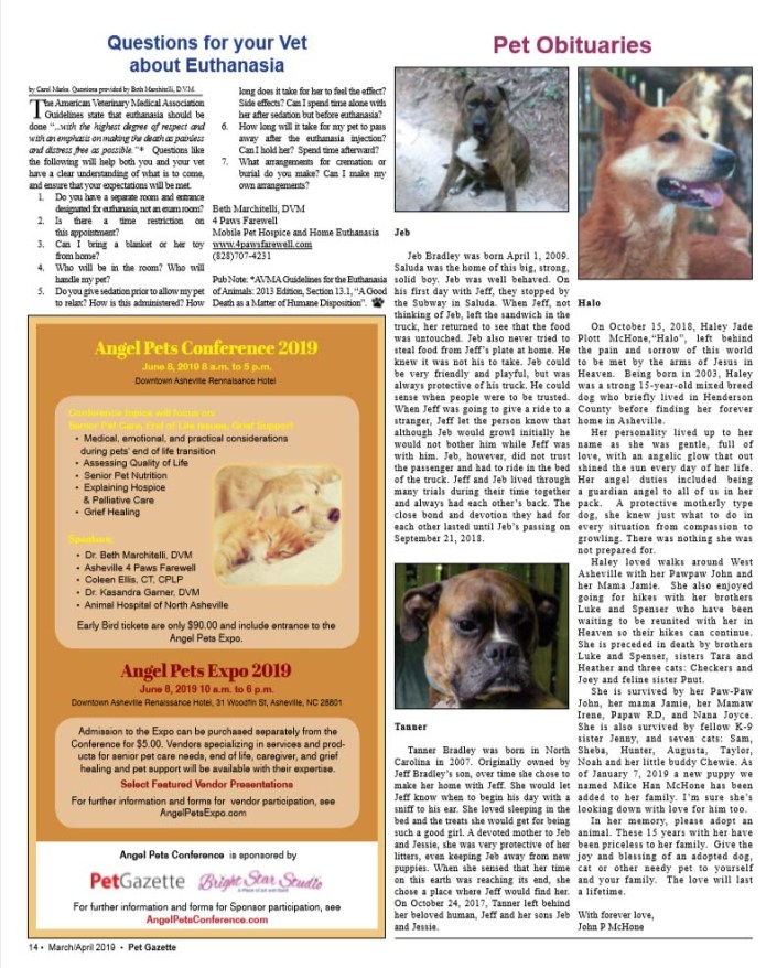 PetGazette Angel Pets March April