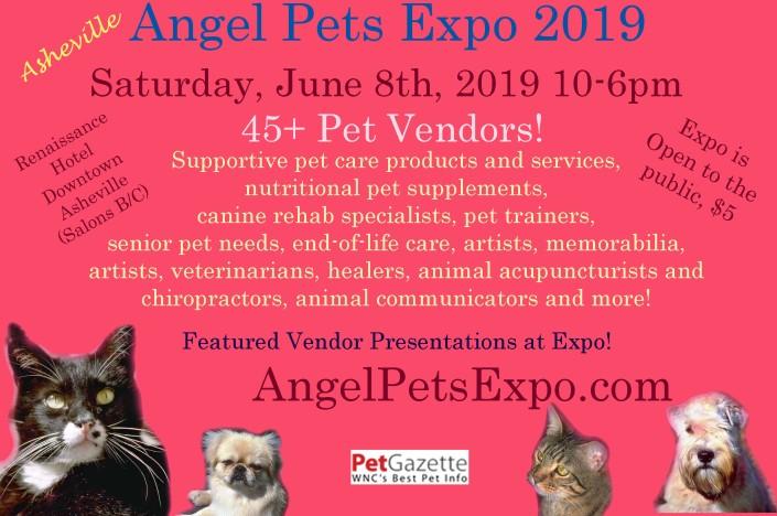 Angel Pets Expo 2019 Half copy