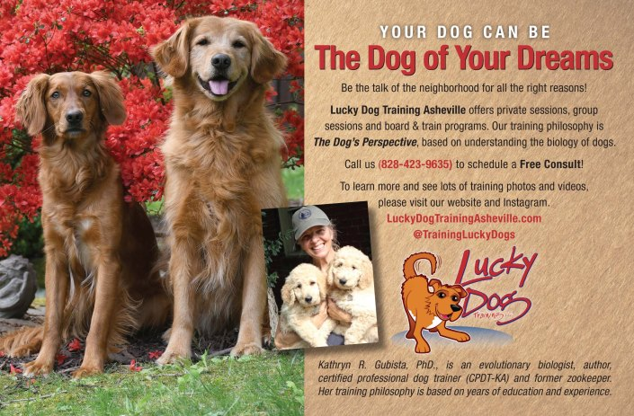 Angel Pets Expo Lucky Dog - New AD 2019 - SND