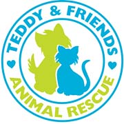 Angel Pets Expo Teddy and Friends Rescue