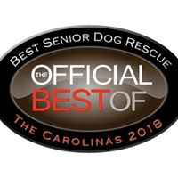 Best Senior dog sanctuary