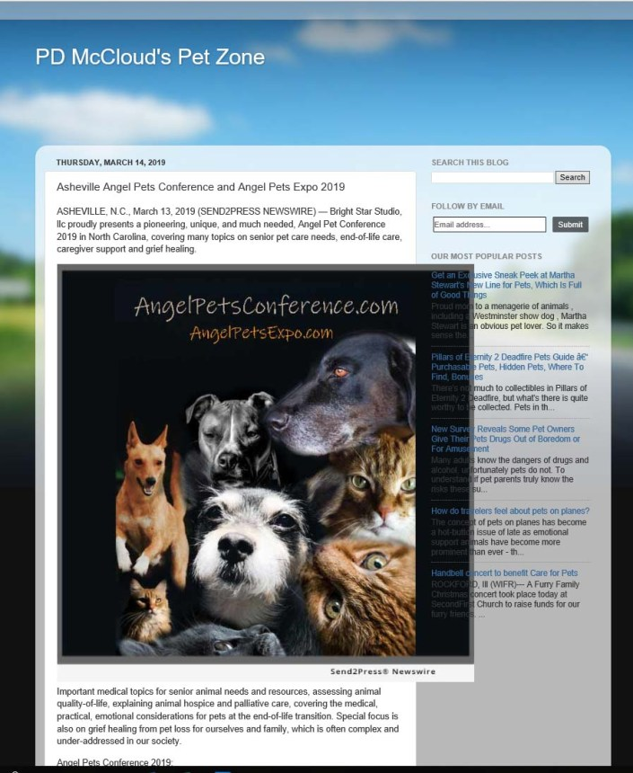 McClouds Petzone Blog Angel Pets.jpg