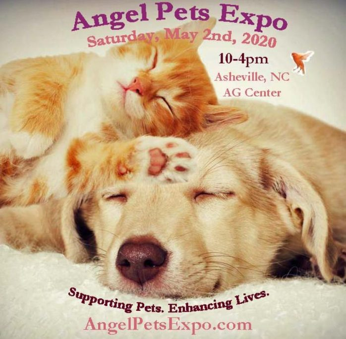 cropped-angel-pets-expo-2020-1.jpg