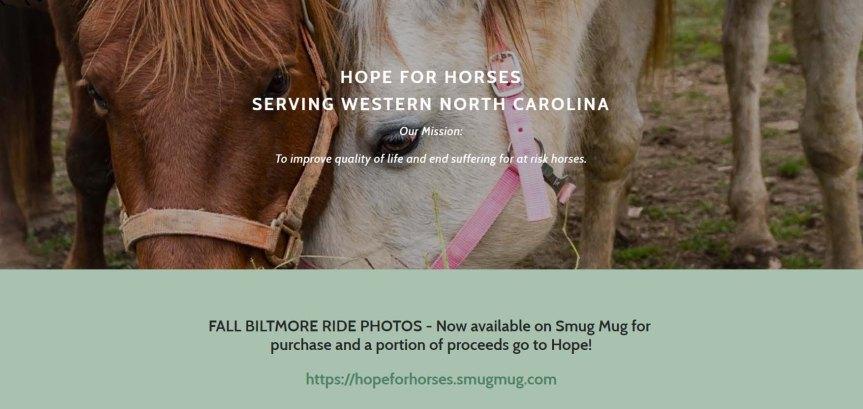 hopeforhorses23 copy